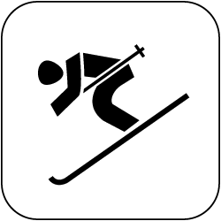 2021 - Logo - Piktogramm - Ski